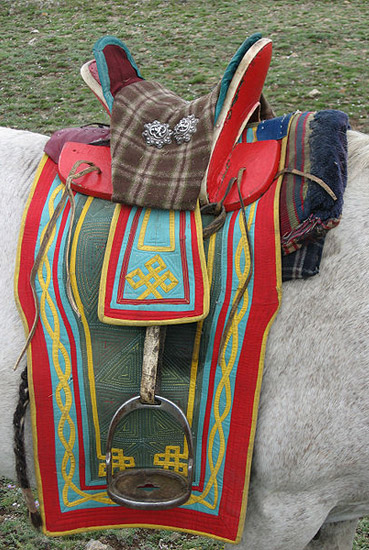 Saddles Around The World The Equinest