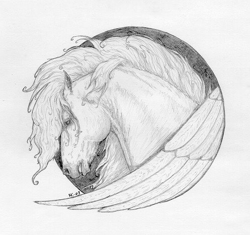 Pegasus - Heady Study, horse artwork