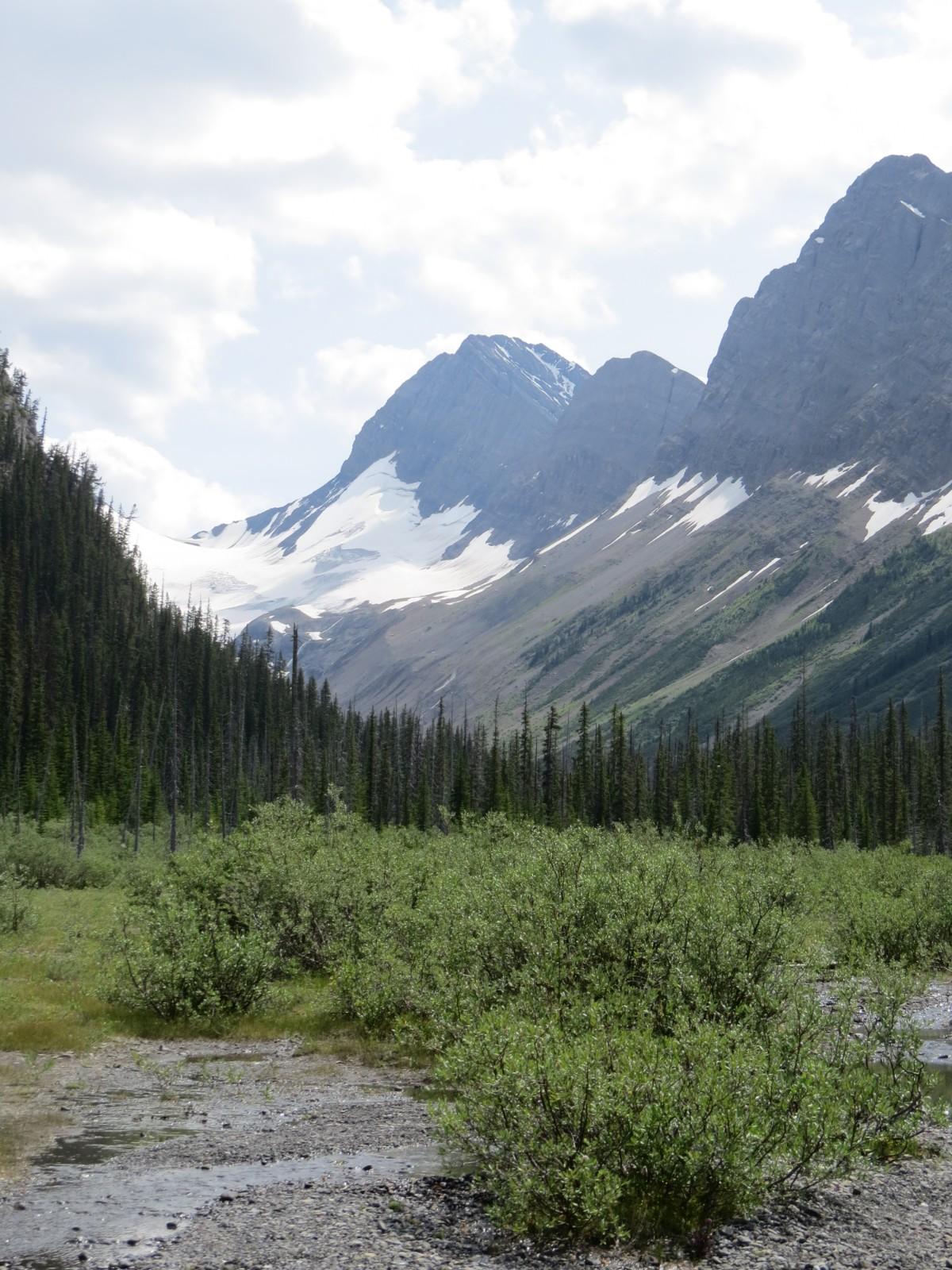 Zelf bakken, ruimte en gemis; het leven in Canada