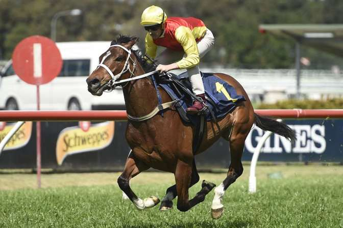 Omei Sword's Everest Credentials Put On Show