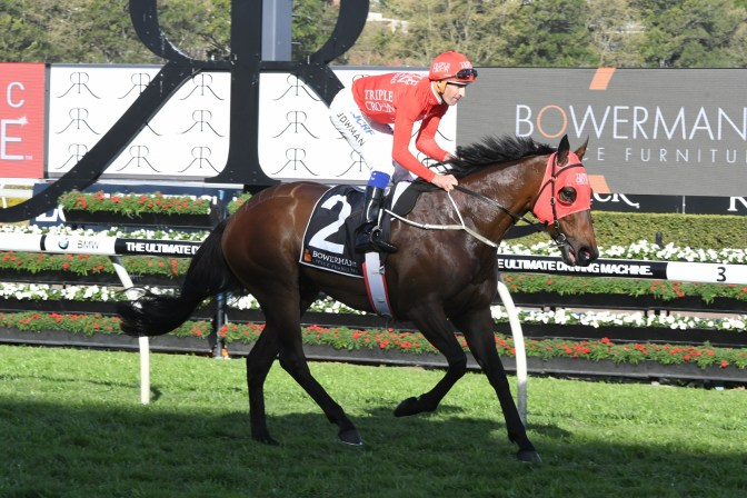 Redzel Delivers In Mini-Everest