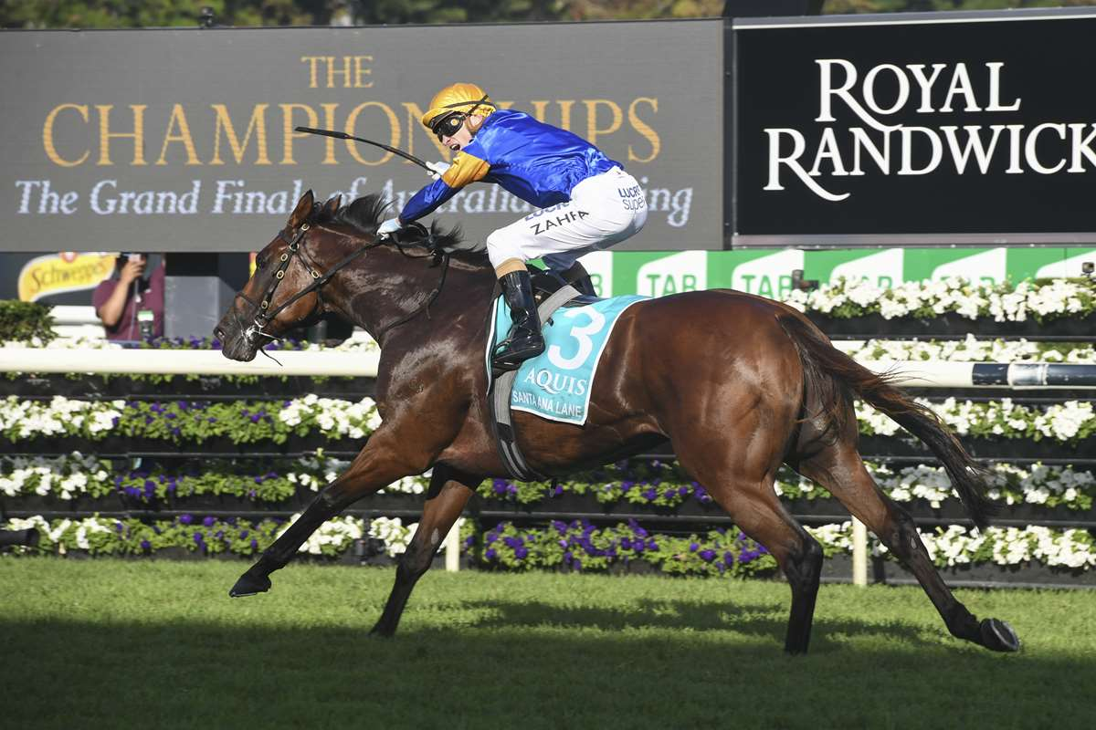 Santa And TAB Chase Everest Redemption