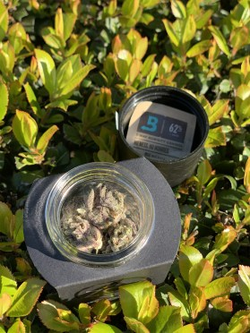 ZoZ Cannabis includes a boveda pack to control the humidity in the jar.