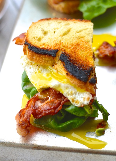 The Ultimate Sandwich, The BALTE: Bacon, Avocado, Lettuce, Tomato, with a runny Egg | www.mybottomlessboyfriend.com