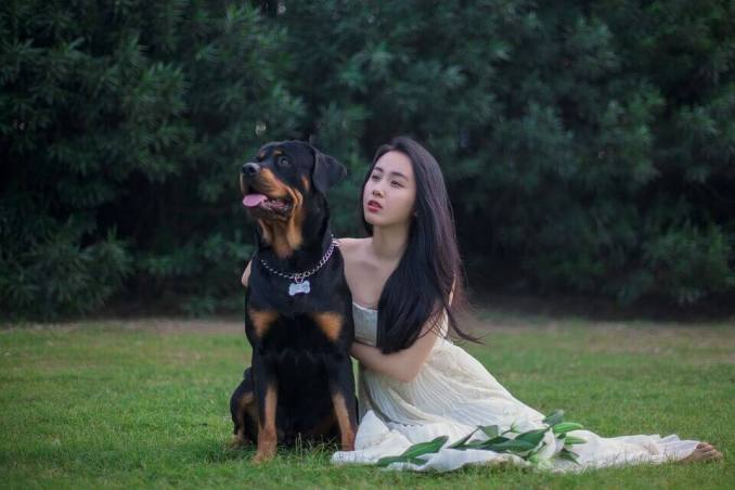 ये हैं दुनिया के सबसे खतरनाक कुत्ते, ले सकते हैं किसी की भी जान | Strongest Dog Breeds in the World,Which dog breed is most dangerous?,What breed of dog has killed the most humans?10 Strongest Dogs You Shouldn't Dare To Mess With,duniya ke sabse bade kutte