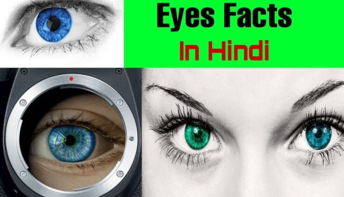 Interesting and Amazing Facts about Eyes