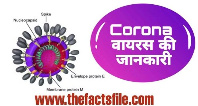 कोरोना वायरस क्या है? जाने इसके लक्षण और बचाव के उपाय - What is Coronavirus and Its Symptoms,How Deadly Corona Virus is?,कोरोना वायरस के बारे में जानकारी