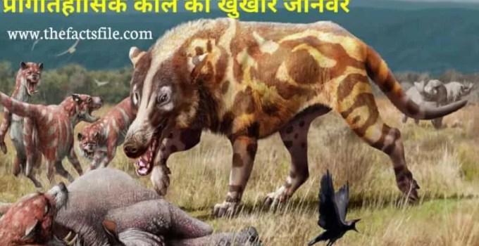 Andrewsarchus - Largest Predatory Mammal in Hindi | Prehistoric animal