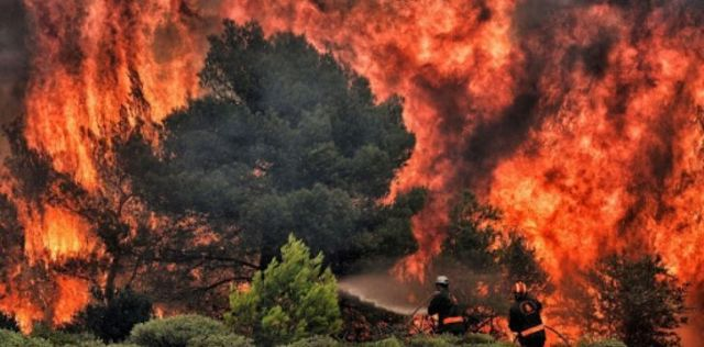 Climate change increases wild fires