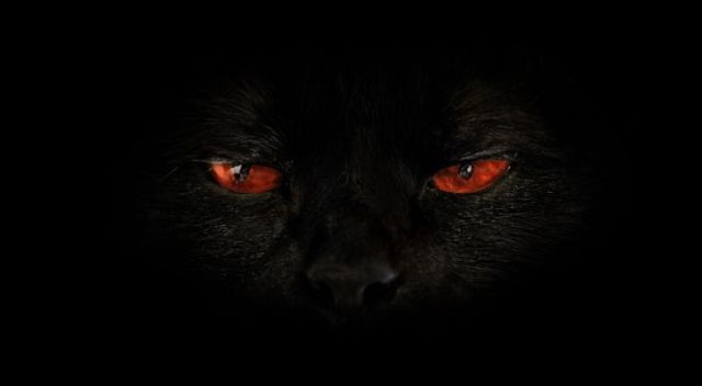 A dark closeup of a black cat with evil looking red eyes