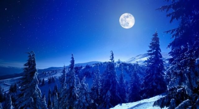 A winter wonderland on Earth with the moon in the sky