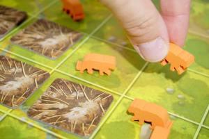 Endangered board game