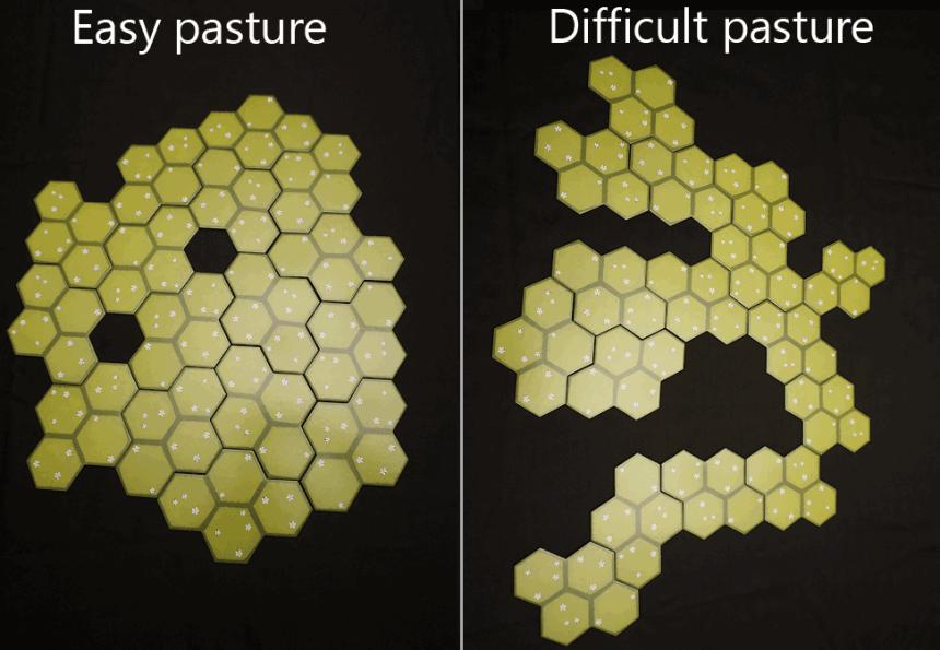 easy pasture; difficult pasture