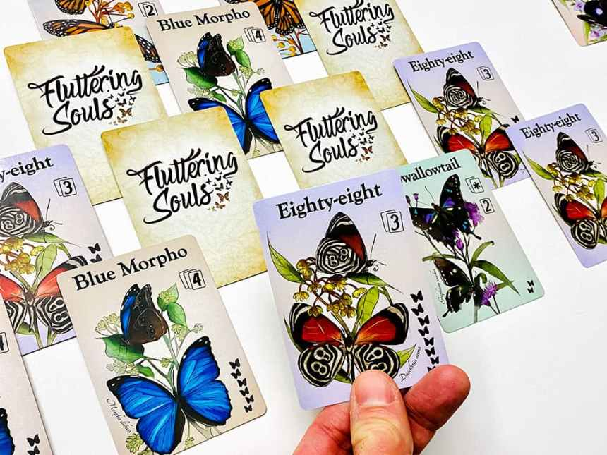 Hand holding a card depicting Eighty-eight butterfly. Also showing: Blue Morpho, Swallowtail, another Eighty-eight.