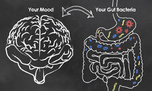 What is the vagus nerve? The gut-brain superhighway | The Family That Heals Together