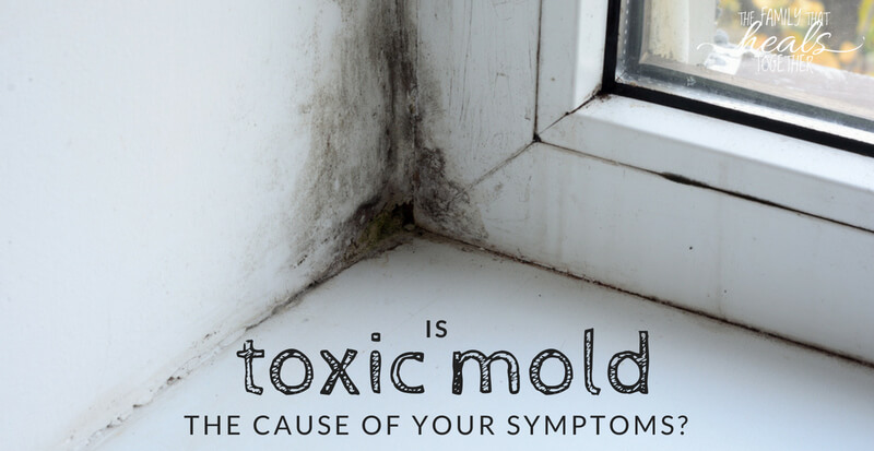 Are These Toxic Mold Symptoms Keeping You Up At Night? | The Family That Heals Together