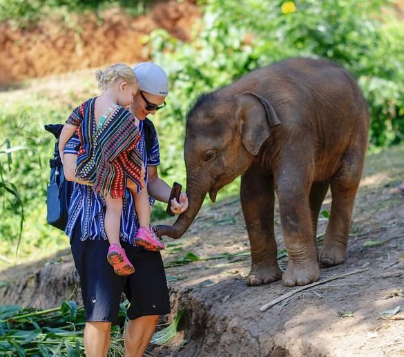 Family Friendly Elephant Encounter Thailand
