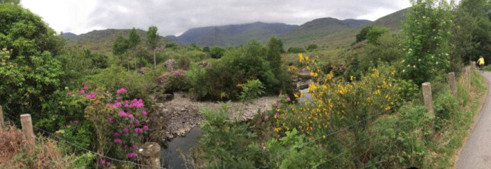 Cycling in Killarney: The Gap of Dunloe bike tour