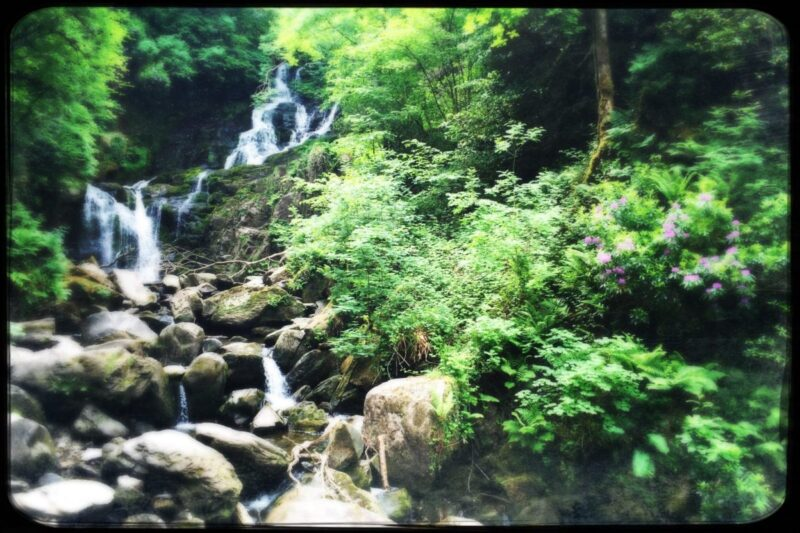 Torc Falls with kids
