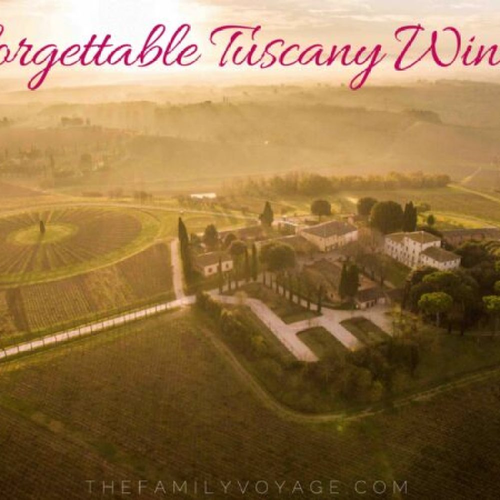 Under the Tuscan Sun: Fine Wine Tasting Tours and Lunch at Avignonesi