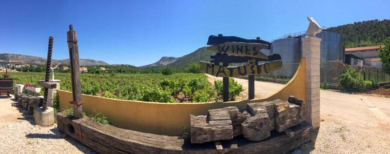 tasting Dingac wine at one of the best wineries in Croatia