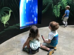 Biomuseo - Panama City kids activities