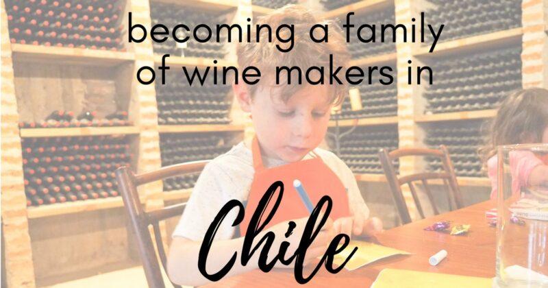 montgras wine chile