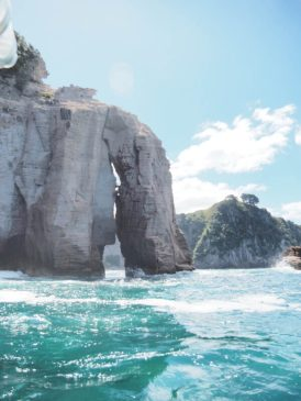 things to do in whitianga