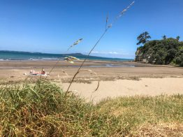 best Auckland beaches