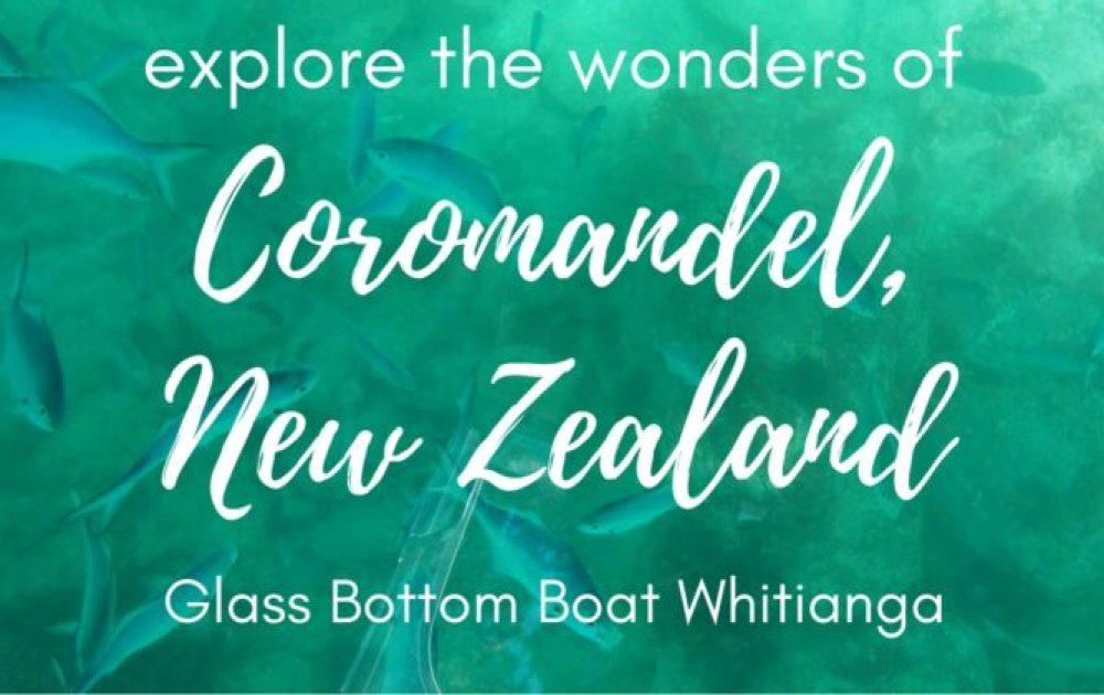 Glass Bottom Boat Whitianga: Exploring the beauty of the Coromandel Peninsula, New Zealand