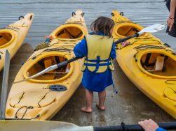 coles bay tasmania kayaking-11