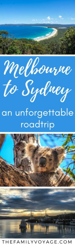 Our Australia roadtrip from Melbourne to Sydney was truly unforgettable! We saw wild kangaroos and koalas, swam at secluded coves and visited lighthouses and rocky cliffs. Don't miss this spectacular drive! Our ultimate Sapphire Coast road trip planner will tell you what to see and where to stop. Stop dreaming, get driving. #Australia #travel #travelplanning #familytravel #sydney #melbourne
