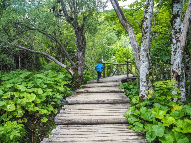 Plitvice Lakes, Croatia: hiking in croatia