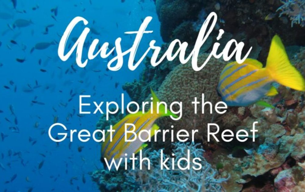 Quicksilver Reef Cruises: the best way to see the Great Barrier Reef with kids