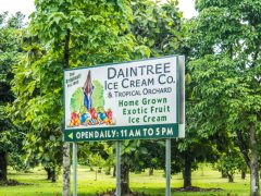 daintree discovery center-13