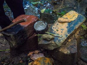mossman gorge queensland-9