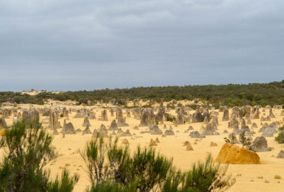 perth pinnacles tour