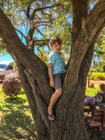 things to do in Margaret River with kids-19