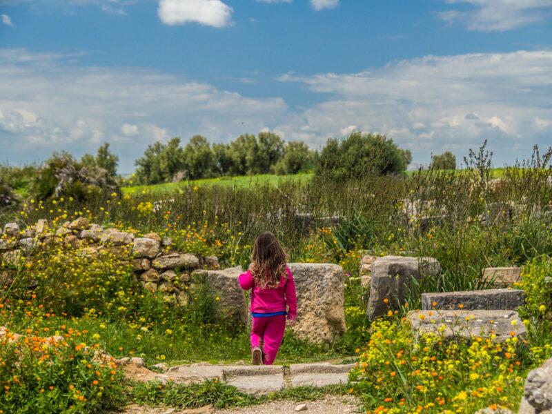 Roman ruins of Volubulis, Morocco in spring