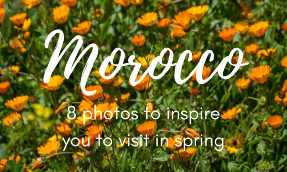 Photo inspiration: Morocco in April