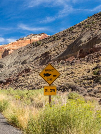 capitol reef national park-3