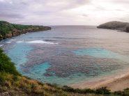 Go Oahu card review-1