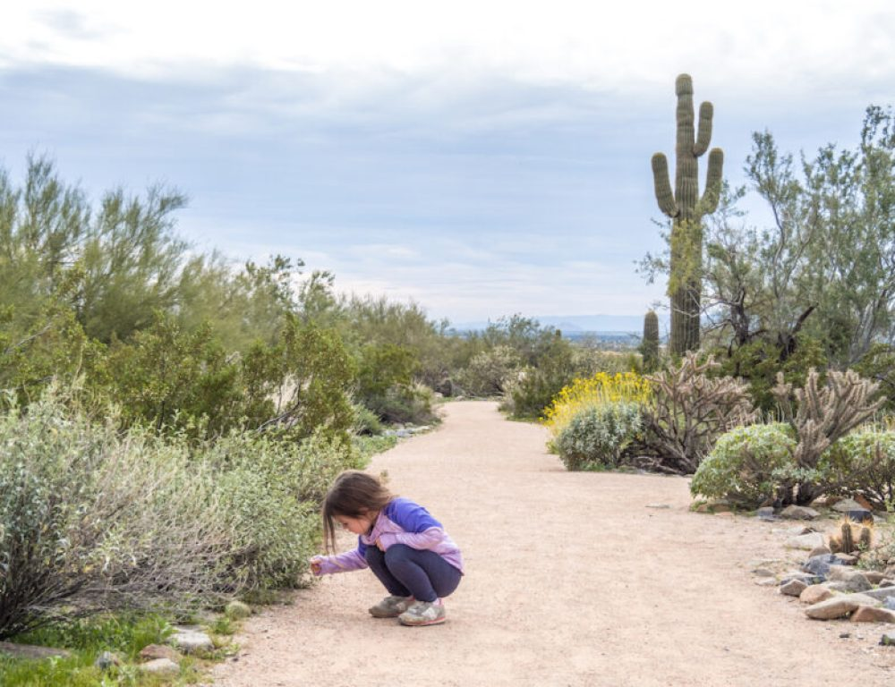 8 Great Things To Do In Arizona With Kids