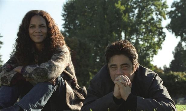 Benicio Del Toro,Halle Berry