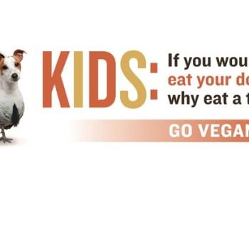 Happy Thanksgiving, From PETA!