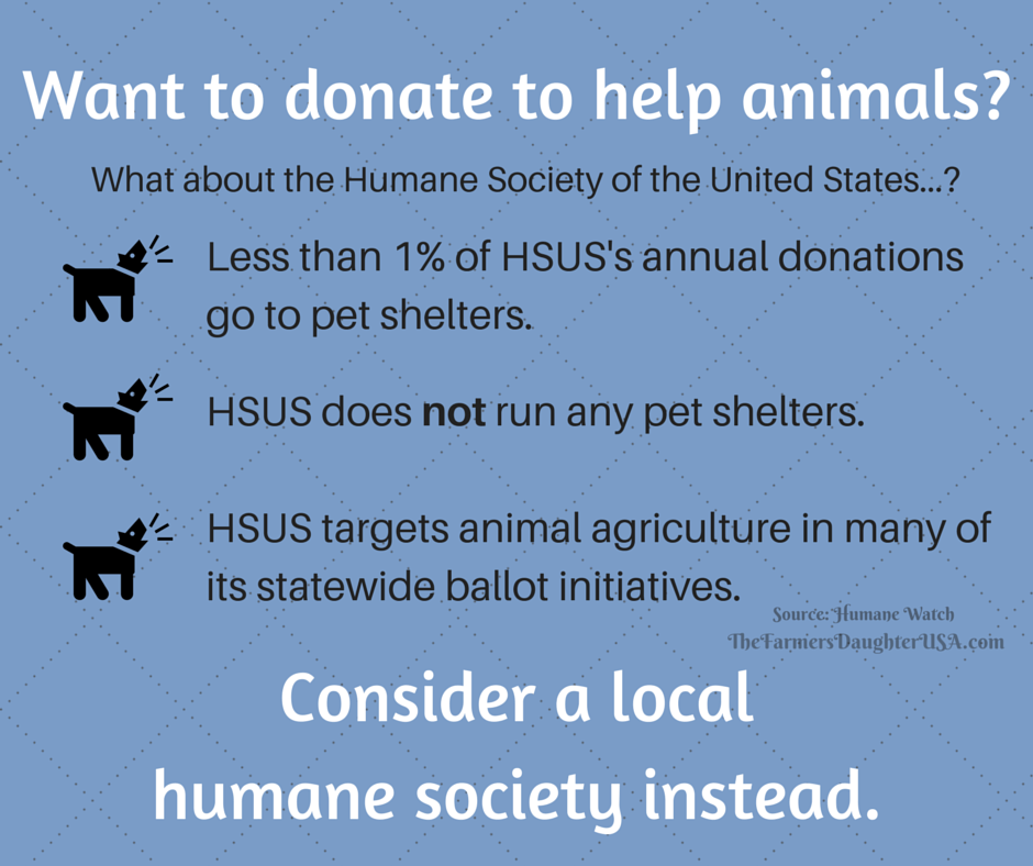 Want to donate to needy animals-