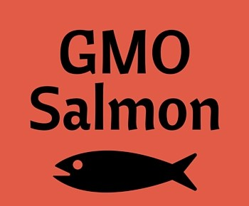 FDA Approves GMO Salmon – Here's What You Need to Know