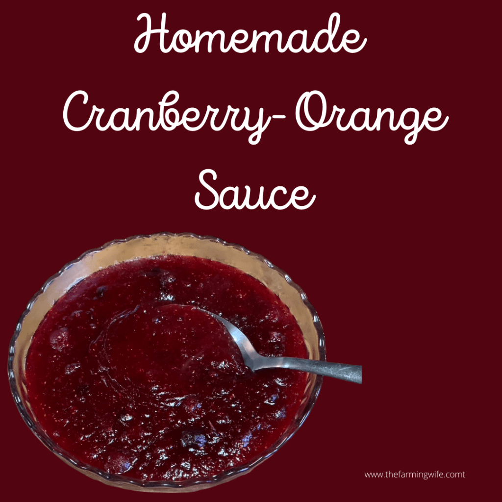Cranberry Orange Pin