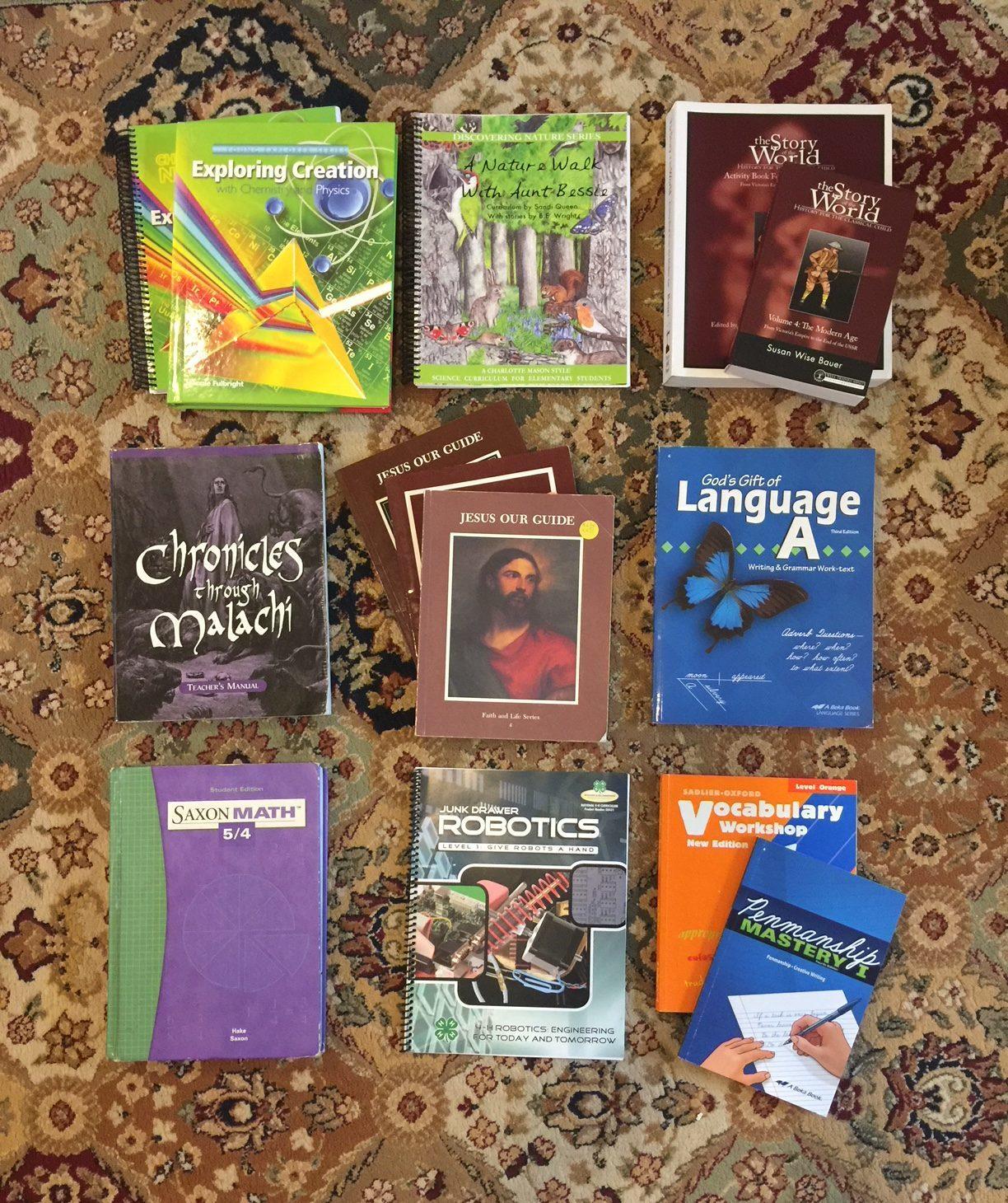Our Homeschool Curriculum Picks For School Year