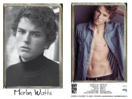 Merlin_Watts